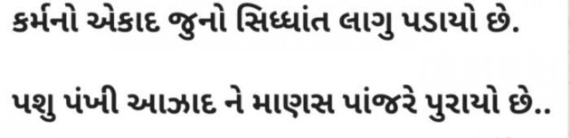 Gujarati Thought by A.H.P : 111373326