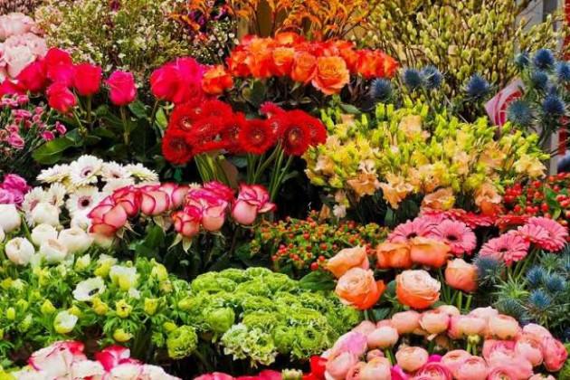 Hindi Blog by Darshita Babubhai Shah : 111388642