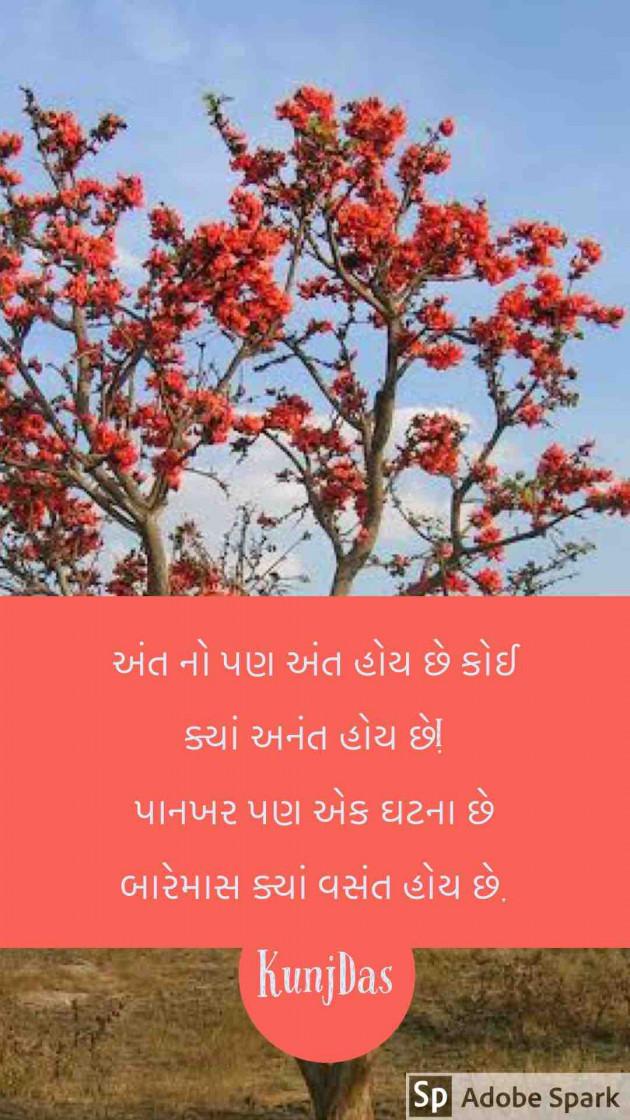 Gujarati Shayri by Kunjdas : 111389056