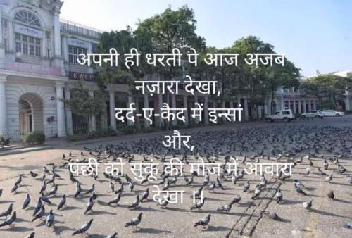 Post by Ankita Mittal on 28-Apr-2020 07:15pm