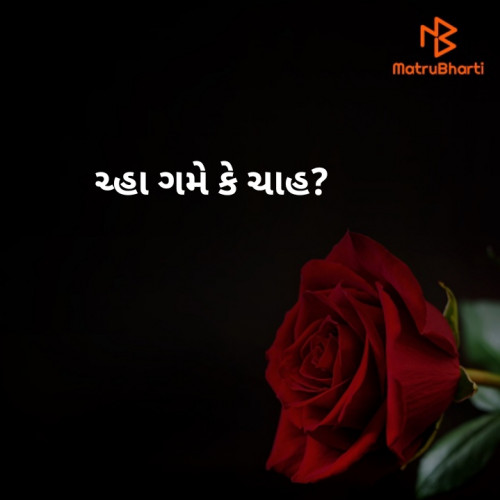 Post by spshayar on 06-Jun-2020 11:28pm