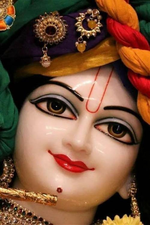 Post by Sonu prajapati on 13-Jun-2020 02:02pm