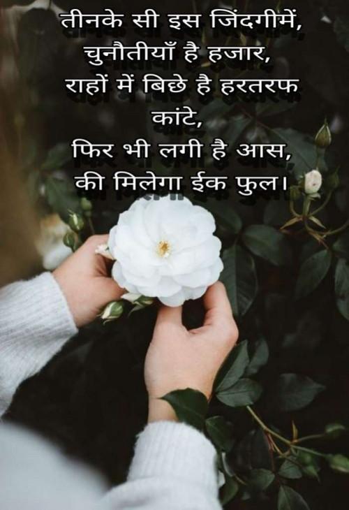 Post by Needhi Patel on 14-Jun-2020 11:41pm