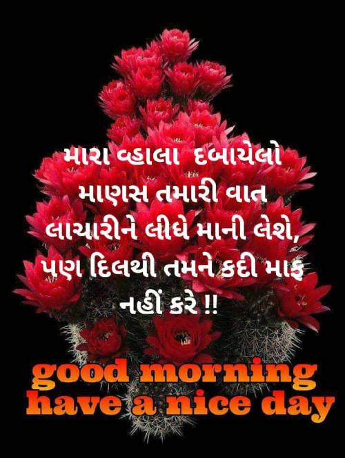 Post by suresh Chaudhari on 21-Jun-2020 05:27am