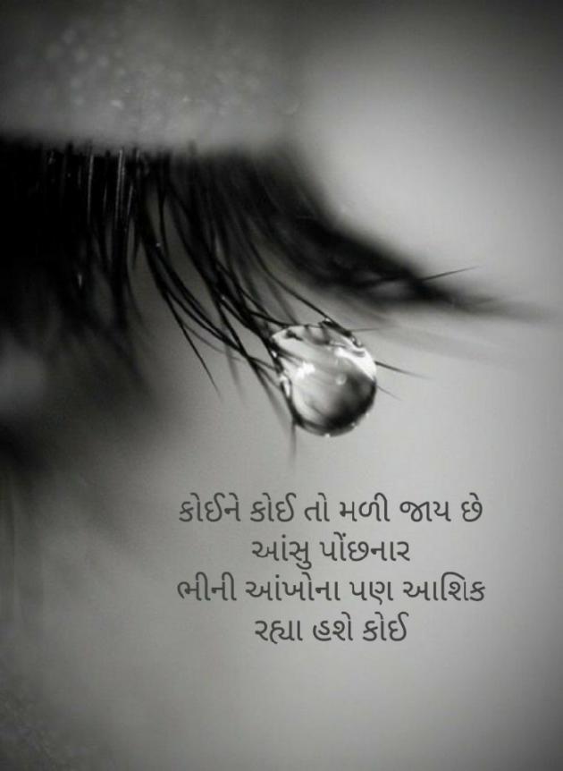 Gujarati Blog by Firdos Bamji : 111487880