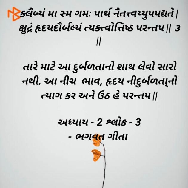 Gujarati Book-Review by Meet suvagiya : 111507838