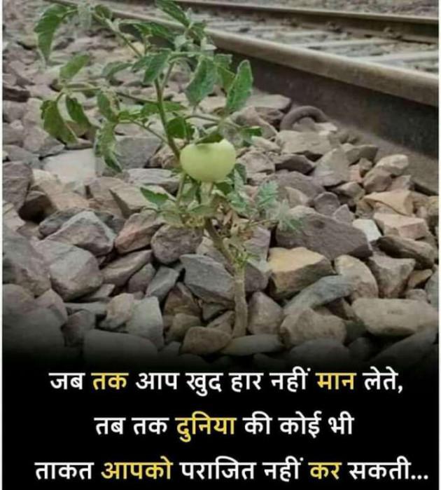 Hindi Motivational by DABHI DILIP : 111517599
