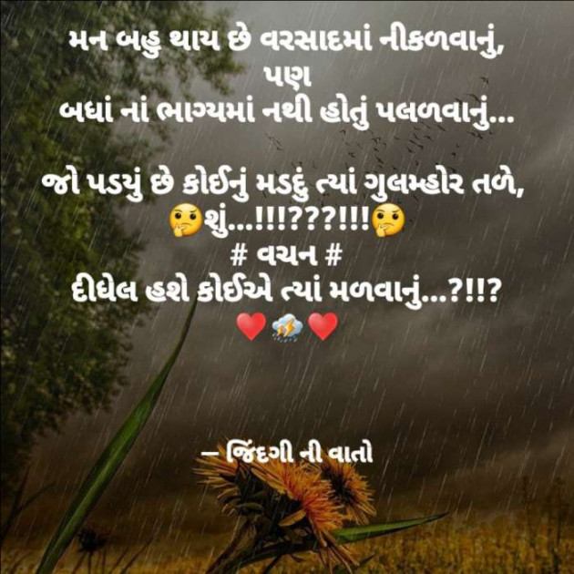 Gujarati Quotes by VIDHI_MISTRY : 111518606