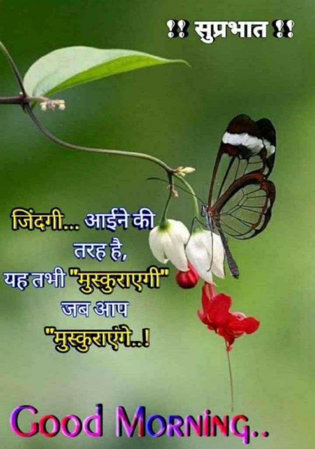 Gujarati Thought by Vishnu Dabhi : 111520038