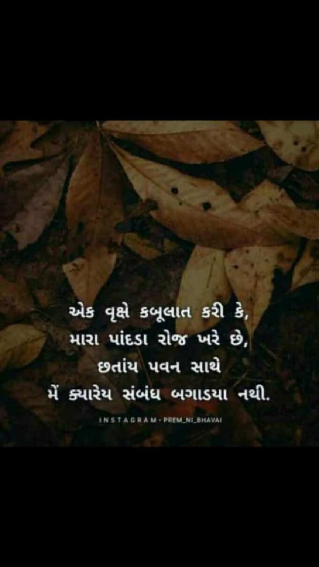 Gujarati Thought by Dhrupa Patel : 111524428