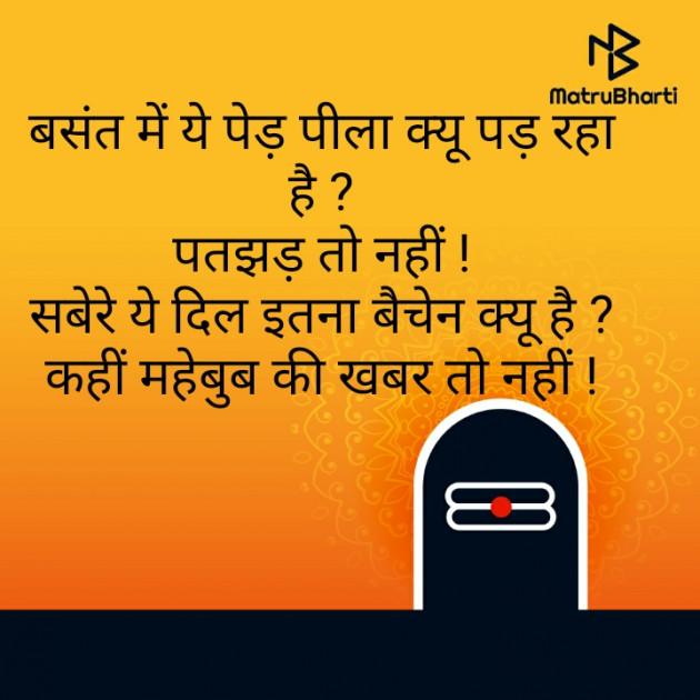 Hindi Shayri by Raje. : 111529521