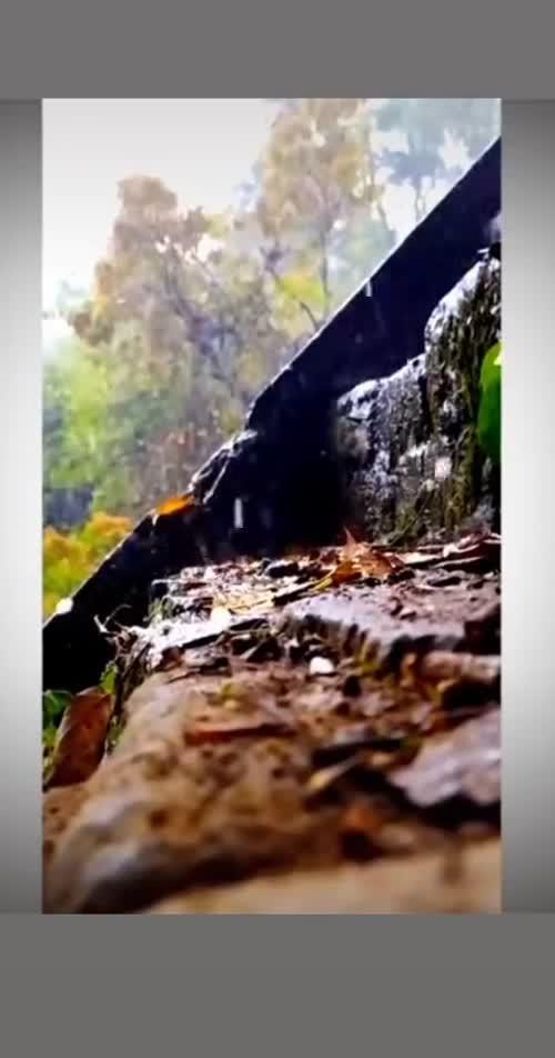 Vibhu videos on Matrubharti