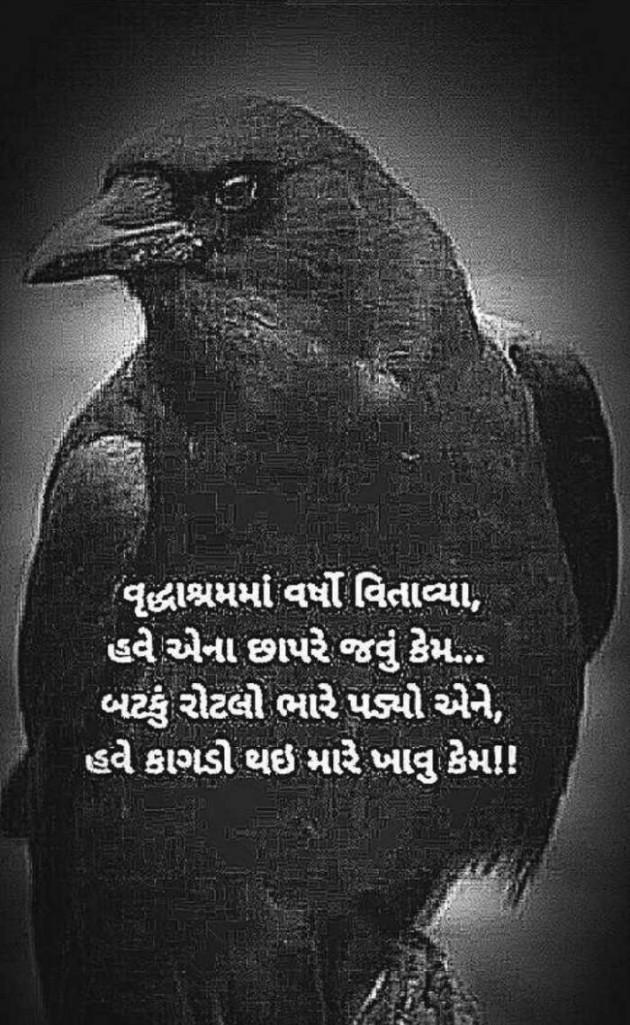 Hindi Poem by Sangita Behal : 111559124