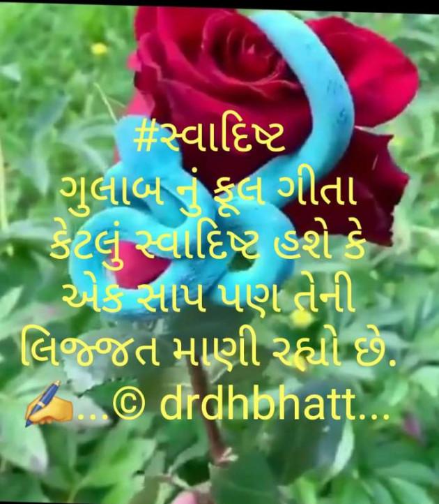 Gujarati Blog by Dr.Bhatt Damaynti H. : 111578206