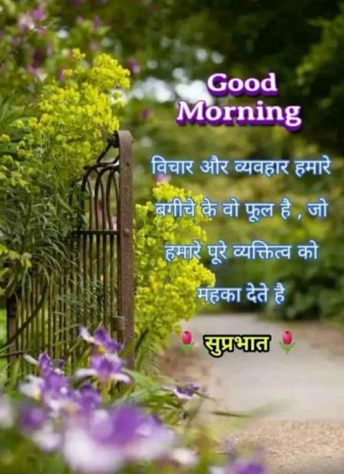 Post by Naranji Jadeja on 21-Oct-2020 09:14am