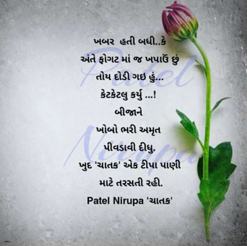 Post by Artist Patel Nirupa on 26-Oct-2020 10:07pm