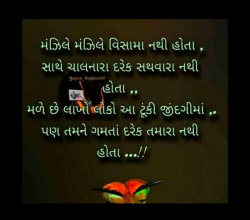 Post by Jay Purohit on 24-Nov-2020 09:42pm