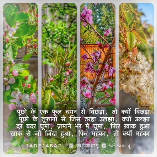 Post by Bhagirathsinh Jadeja on 17-Apr-2021 10:29pm