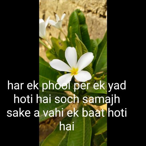 Post by Dharmesh Parmar on 29-Apr-2021 10:09am