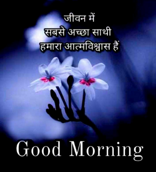 Post by Love Guru on 08-May-2021 08:09am