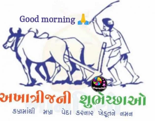 Gujarati Whatsapp-Status by Patel Pradip : 111705621