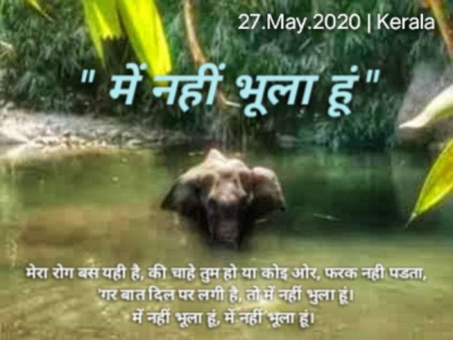Post by pk BOSS on 27-May-2021 12:11am