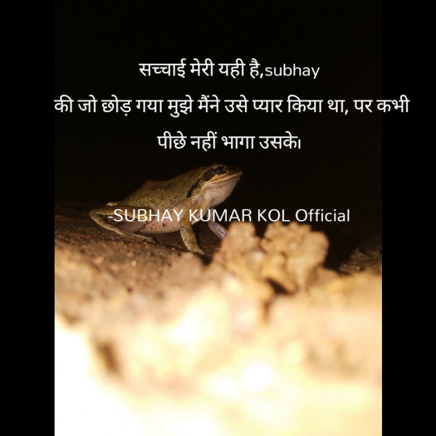 Hindi Blog by SUBHAY KUMAR KOL Official : 111719215