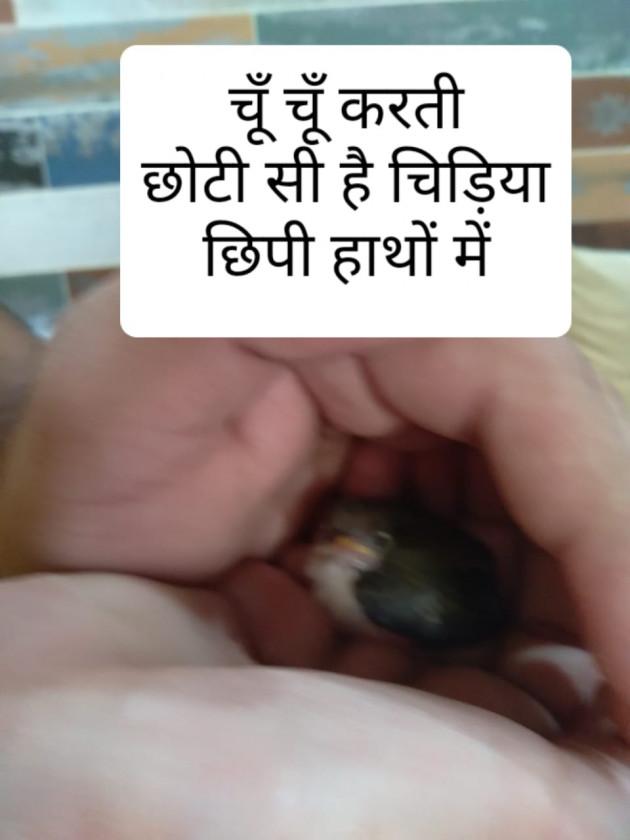 Hindi Hiku by Pranava Bharti : 111726952
