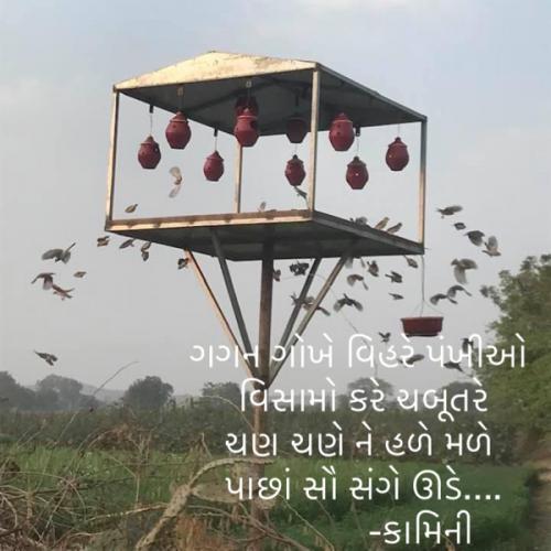 Post by Kamini Shah on 22-Jul-2021 09:24am