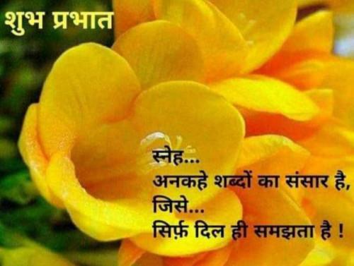Post by Shweta Deep on 02-Aug-2021 07:23am