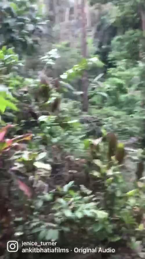 Jenice Turner videos on Matrubharti