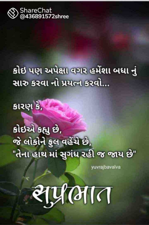 Post by M shah on 12-Aug-2021 07:39am