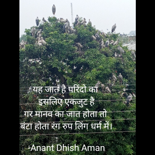Post by Anant Dhish Aman on 29-Aug-2021 12:45am