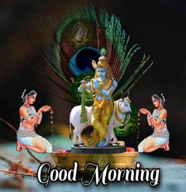 Gujarati Whatsapp-Status by Zala Jayvirsinh : 111753385
